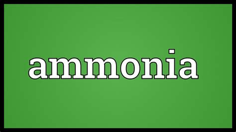Does Detoxing Ammonia Means It Removes It From The Aqauarium by Ammonia Meaning