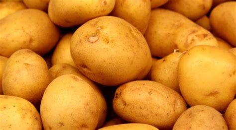 potatoes the how do gardener