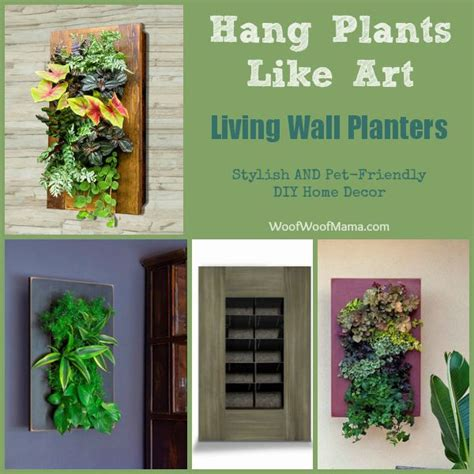 Diy Living Wall Planter by 1000 Images About Great Pet Diy Ideas On Pet