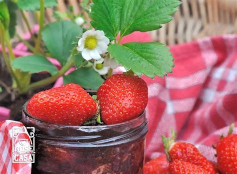 marmellata di fragole fatta in casa confettura di fragole fatta in casa cosefatteincasa it