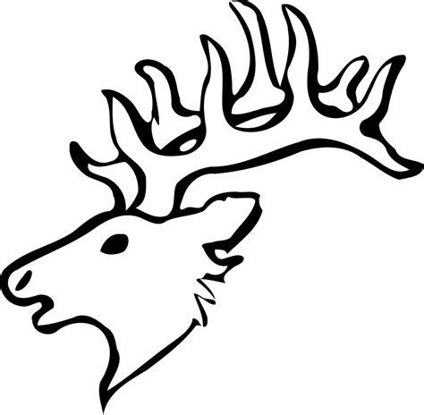 coloring page of deer head free printable deer coloring pages for kids