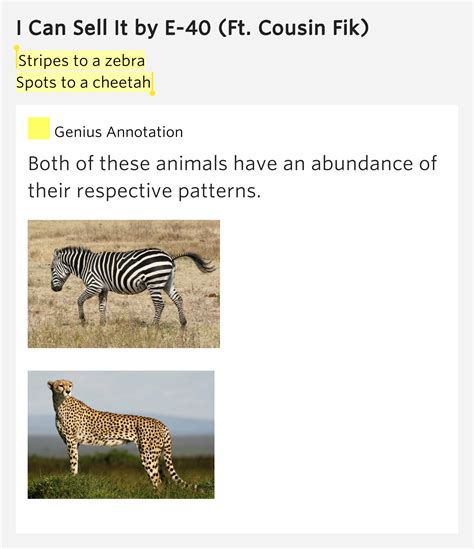 zebra pattern meaning stripes to a zebra spots to a cheetah i can sell it