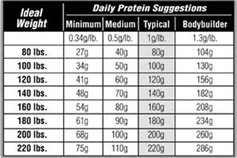 1 protein per pound how much protein do you need nutrition express articles