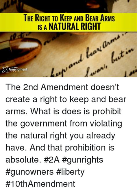 the green amendment securing our right to a healthy environment books 25 best memes about right to keep and arms right