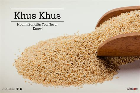 Poppy Seeds Khuskhus For And Health And Personality Grooming by Khus Khus Health Benefits You Never Knew By Dr Vinay