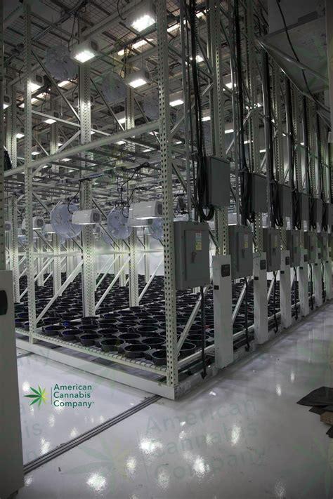 grow room equipment world record marijuana park coming in 2017