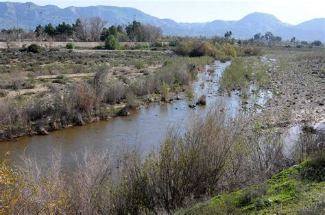Ventura County Records Rainfall Record For Ventura County The Fillmore Gazette