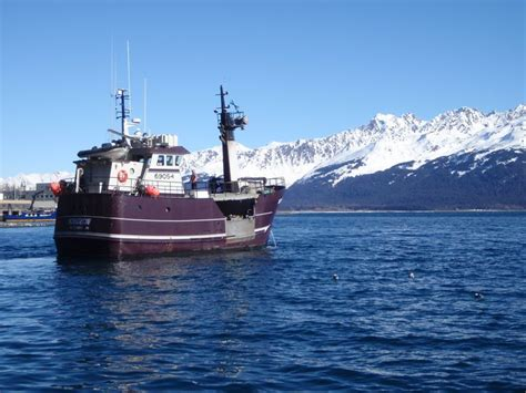 commercial fishing boat definition 17 best vintage fishing boats images on pinterest