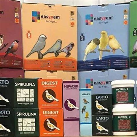 vendita uccelli da gabbia vendita uccelli da gabbia e da voliera hobby natura