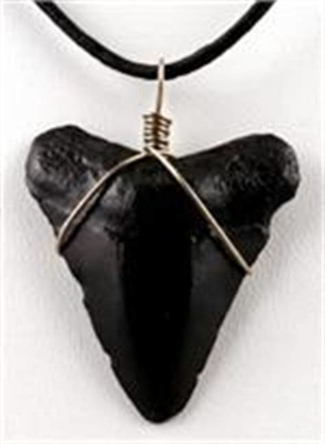 gold necklace vale shark tooth necklace