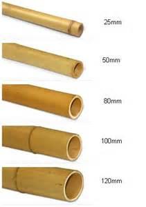 tige bambou canne de bambou d 233 coration bambou tuteurs