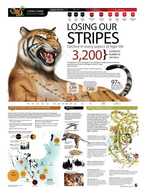 infographics animal kingdom infographic losing our stripes decline in every aspect of tiger life animals infographics