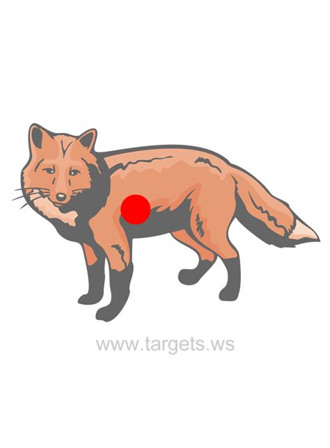 printable animal shooting targets targets site map