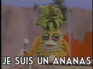 Ananas Pineapple Meme - telefrancais on tumblr