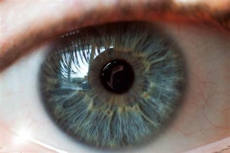 hd eye pattern daltonizm problemy z kolorami rynekfarb pl rynek farb
