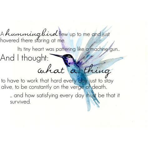 hummingbird tattoo symbolism klaus hummingbird quote hummingbird quotes hummingbird