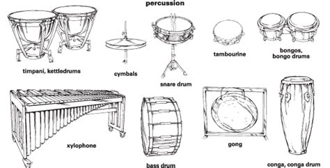 percussion section of the orchestra percussion definition for english language learners from