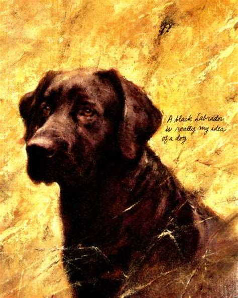 Labrador Retriever Artwork by Labrador Retriever Vintage Dog Art Prints Gifts And