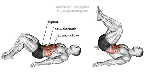 crunch an isolation exercise target rectus abdominis synergistic muscles