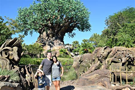 13 best images about animal kingdom on pinterest monkey our trip to disney world top 5 attractions at animal