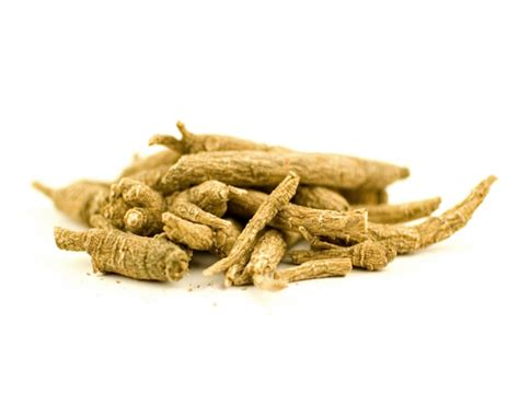 Ginseng Kalimantan siberian ginseng the almost forgotten adaptogen and energy booster borneopost