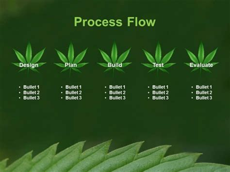 Cannabis Leaf Powerpoint Template Marijuana Website Templates