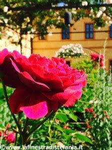 fiori da regalare alla fidanzata la finestra di stefania william shakespeare e la seduzione