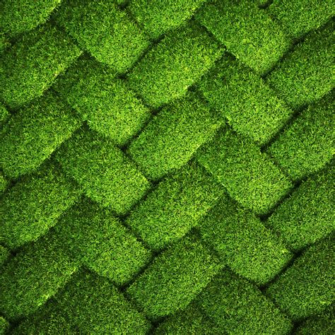 wallpaper abstract grass a woven pattern of grass abstract qhd wallpaper 2560x2560