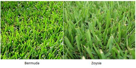 zoysia vs bermuda sod ottawa we ll take care of all your sod needs