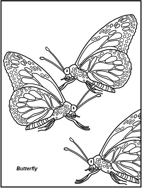 insect coloring pages free printable pictures of insects coloring home