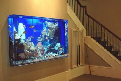 amazing home wall aquariums design ideas youtube wall fish tanks tips to construct
