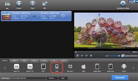 format video ipod what is video ipod format