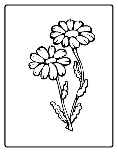 desenho de plantas partes de uma planta para colorir az dibujos para colorear