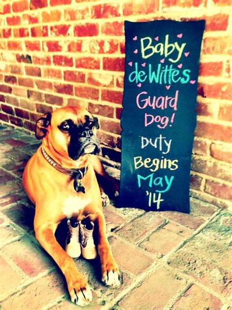 Natural Ways To Sleep Better 10 adorable ways to let your dog announce your pregnancy