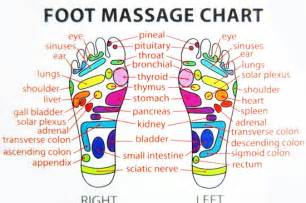 Reflexology foot massage map of energy zones pictures to