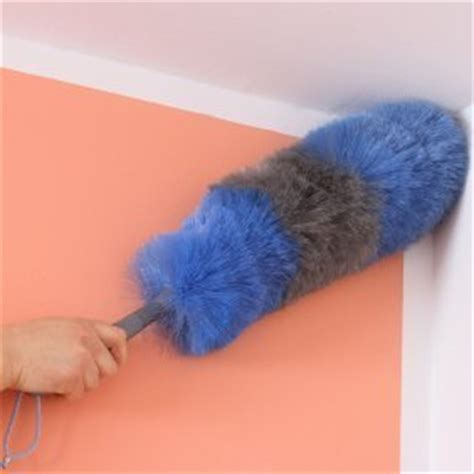 keeping your house dusted thriftyfun