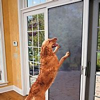 3 simple ways to protect your door from scratches