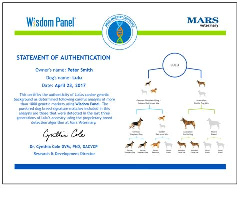 dna test reviews wisdom panel 4 0 canine dna test dna test review
