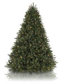 5 5 balsam hill rocky mountain pine artificial christmas