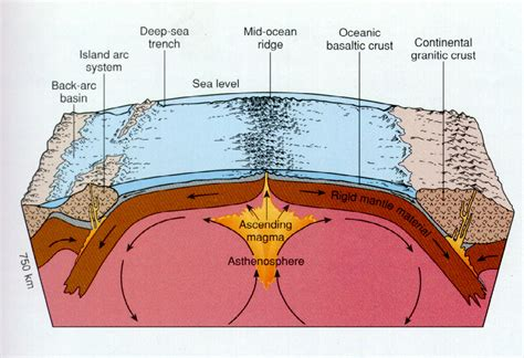 What Does Sea Floor Spreading by Image Gallery Seafloor Spreading Diagram