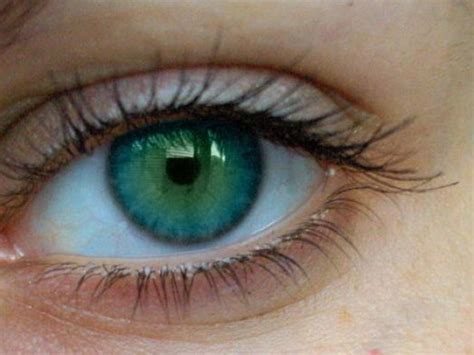 beautiful green color rare eye color the most rare eye color pictures 1 look