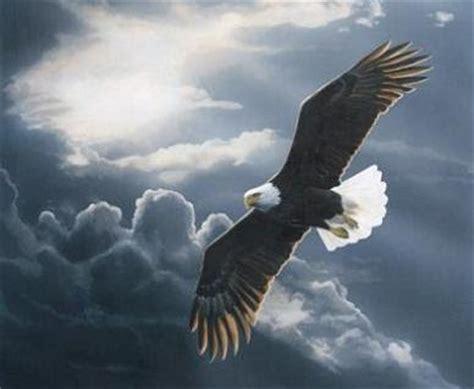 storm of eagles the rodrick tomorrow today soaring like eagles