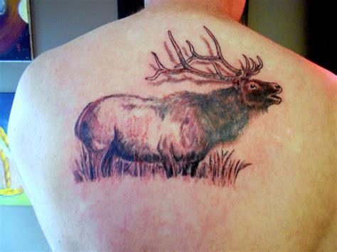 elk tattoo my elk tattoos i like