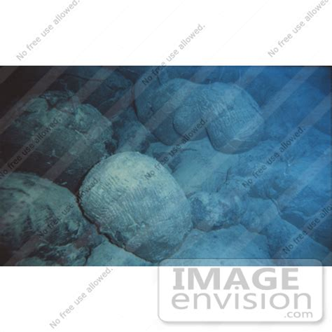 How Is Pillow Lava Formed by Picture Of Pillow Lava Rocks Underwater 15091 By Jvpd