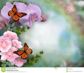 butterflies orchids and roses background stock