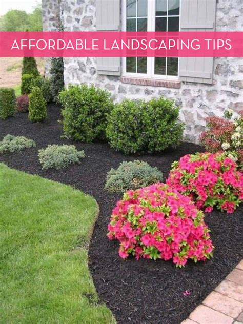 landscaping tips 10 tips for landscaping on a budget 187 curbly diy design