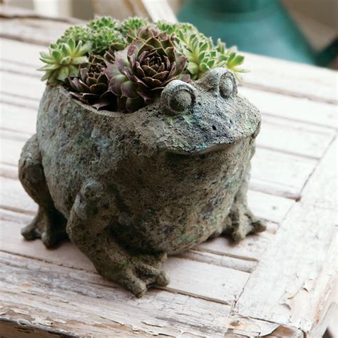 Frog Planters succulent frog eclectic outdoor pots and planters by