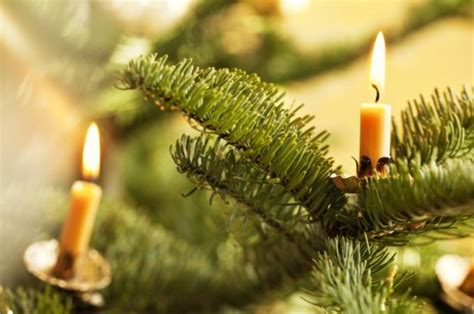 albero di natale con candele auguri di natale ai lettori di mercoglianonews nei versi