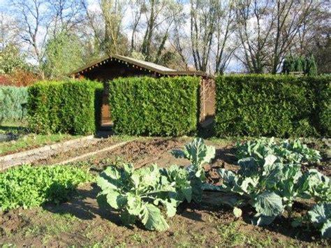 Mein Garten 24 by Rotkehlchenweg 99 Schrebergarten Landau Pfalz