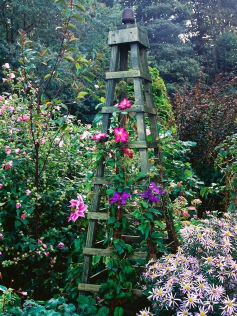 garden structures for climbing plants make an obelisk for climbing plants hgtv